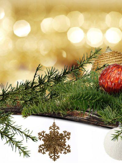 Коледна украса на преференциални цени