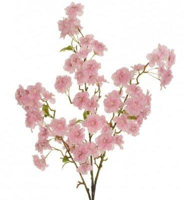 Пролетни клони и цветя