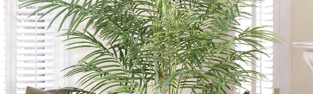 изкуствени палми